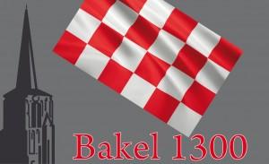 logo Bakel 1300